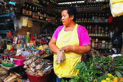 Die Marktfrau vom Stand der Firma Panal, wo ich bisher die beste Qualität von Una de Gato gefunden habe. Es ist auch möglich, hier sauberes Oje zu erwerben, wie reines Cobaiba ohne den gewinnbringenden Zusatz streckender Öle.